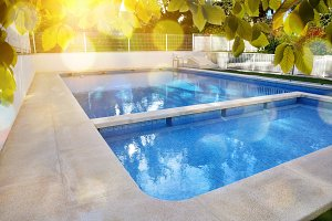 Swimming pool in garden overview
