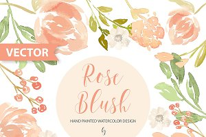 Watercolor Rose Blush Vector