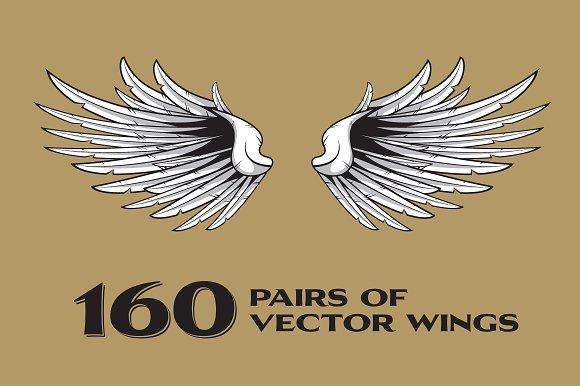 160 Pairs Of Vector Wings