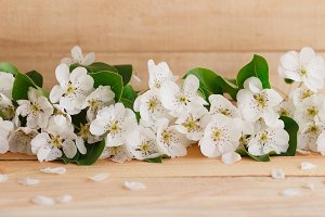 Petals and pear's blossom on the wooden table