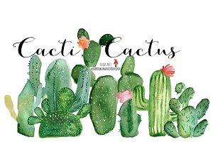 Cacti watercolor, cactus watercolor