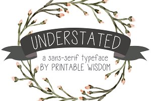 """Understated"" a sans-serif typeface"