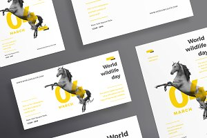 Flyers | World Wildlife
