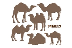 Camel Silhouettes set