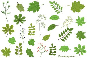 Green leaves - foliage clip art