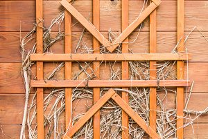 Wooden trellis on wood wall