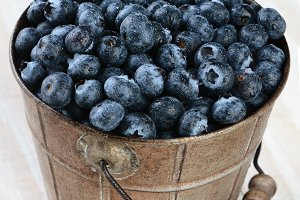 Bucket of Blueberries Rustic Table
