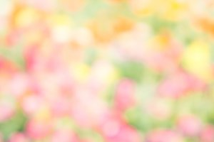 abstract nature blur color style