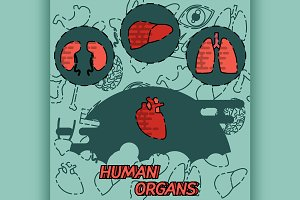 Human organs flat concept icons