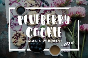 Blueberry Cookie::Messy Brush Font::