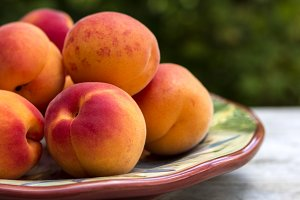 Plate of Apricots