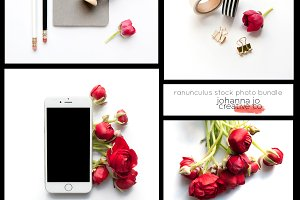 Ranunculus Stock Photo Bundle