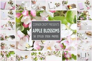 Apple Blossom Styled Photo Bundle