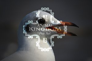 Animal Kingdom Photo Pack V3