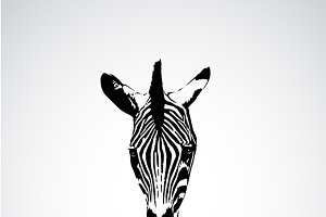 Vector of an zebra face.