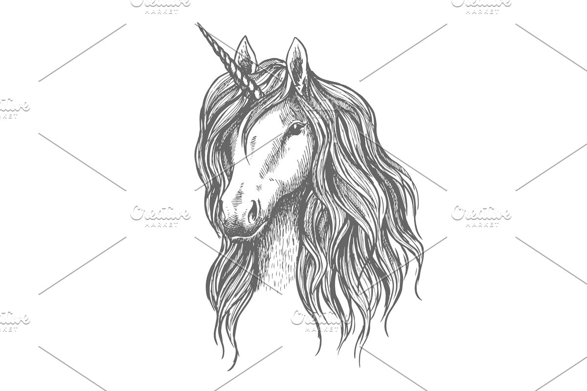 Unicorn head with mane vector sketch