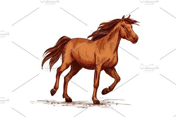 Horse Racer Or Equine Races Vector Sketch Symbol