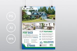 Real Estate Flyer. Vol-10