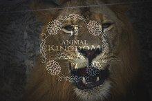 Animal Kingdom Photo Pack V.6