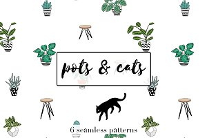 Pots and cats. Pattern set