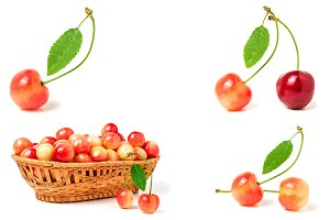 Red and yellow sweet cherry isolated on white background. Collection or set