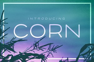 Corn - A clean font with style