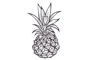 Hand drawn Pineapple.