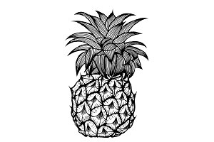 The pineapple sketch.