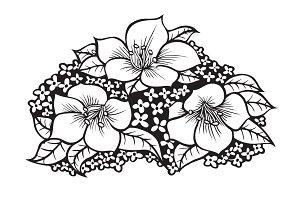 drawing flowers illustration.