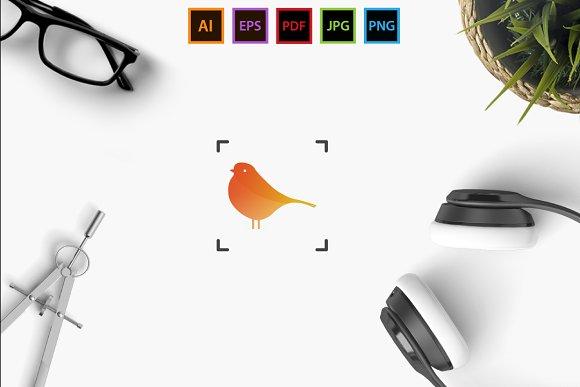 Bird Frame Extended License
