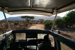 Driving during a safari tour