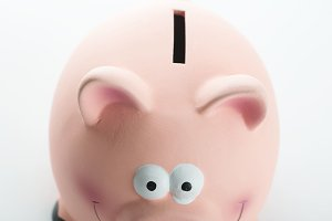 Close-up of a piggy bank on white background. Isolated.