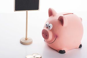 Coins next to a piggy bank and a billboard on white background. Isolated.