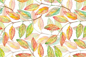 Watercolor rowan leaf plant pattern