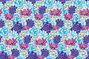 Watercolor succulent plant pattern