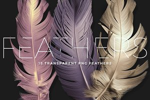 Transparent PNG Feathers Pack