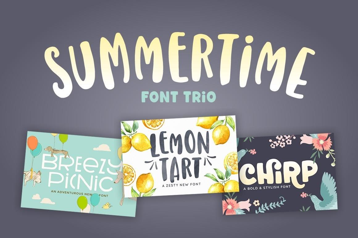 Summertime Font Trio Display Fonts Creative Market