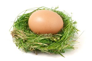 Egg in the nest of green grass isolated on white background