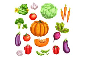 Vegetable watercolor set of fresh organic veggies
