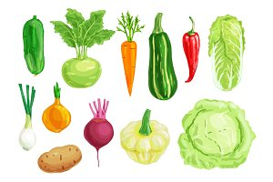 Organic vegetable watercolor illustration set