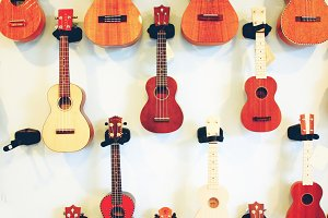 Ukulele on wall