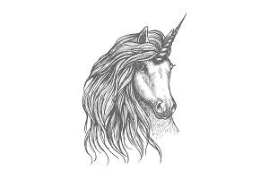 Unicorn fantastic horse sketch for tattoo design