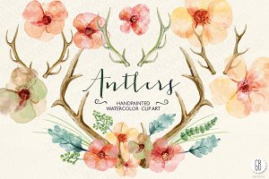 Watercolor flowers, deer antlers