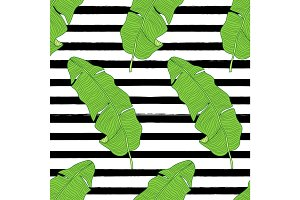 Beautiful green botanical seamless pattern with tropical foliage as banana palm tree leaves on striped background