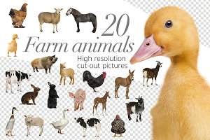 20 Farm Animals - Cut-out Pictures