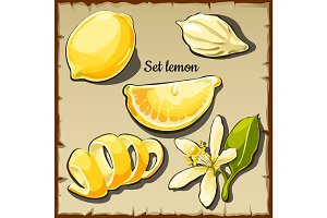 Lemon set, four vector icons