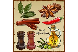 Different spices of the chef and foodie