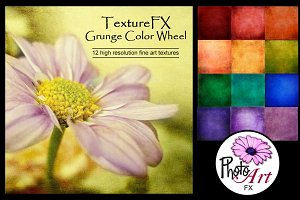 "TextureFX: Grunge Color Wheel(12""sq)"