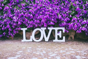 Love is everywhere, love is spring