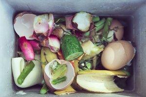 organic waste food